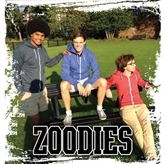 Picture for category Zoodies